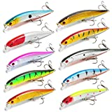 10 Pcs 3D Minnow Fishing Lures Bait Set with Water Blocking Piece Hard Bait Lure with Treble Hook for Bass Trout Pike Fishing Saltwater Topwater Swimbait Slow Sinking Lure Fishing Tackle Kits