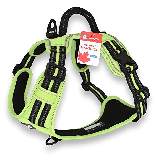 CUDDLY PET, Dog Harness No Pull, Walking Pet Harness with 2 Metal Rings and Handle Reflective Breathable Oxford Soft Vest Easy Control Front Clip Harness for Small Medium Large Dogs (Small, Green)
