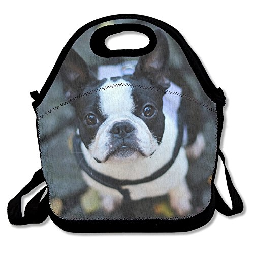 Neoprene Lunch Tote - FRENCH BULLDOG Waterproof Reusable Lunch Bags Boxes For Men Women Adults Kids Toddler Nurses With Adjustable Shoulder Strap - Best Travel Bag