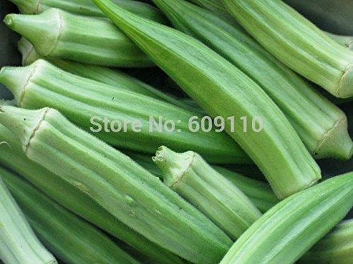 100 graines de gombo Clemson Spineless