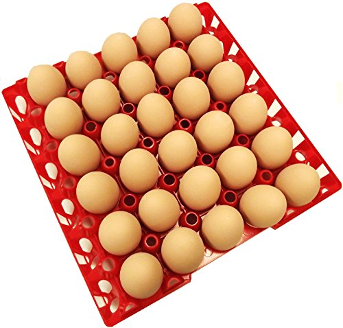 Rite Farm Products 12 30 Egg Poly Chicken Trays Shipping Carton Poultry Flat