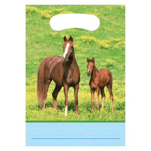 Creative Converting Wild Horses 8 Count Party Favor Loot Bags