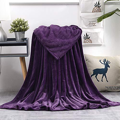 KEITE Mantas para Sofa de Franela,Manta para Cama 90 Reversible de 100% Microfibre Extra Suave,Manta Transpirable (Púrpura, 130 x 150 cm)