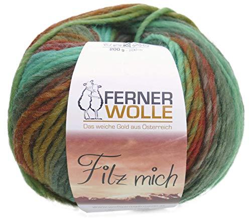 200g Ferner Wolle Filz Mich, Filzwolle Farbverlauf, Stricken und Filzen in der Waschmaschine, Wolle zum Strickfilzen mit Anleitung (2030)