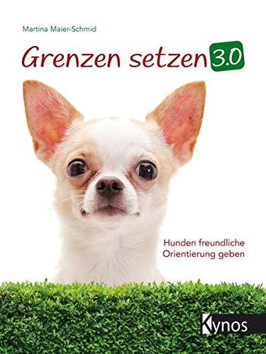 Grenzen setzen 3.0: Hunden freundliche Orientierung geben
