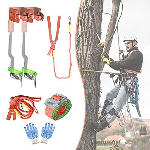 Vogvigo Baumklettern Ausrüstung, Verbreitertem und Verdicktem Design Steigeisen für Bäume mit...