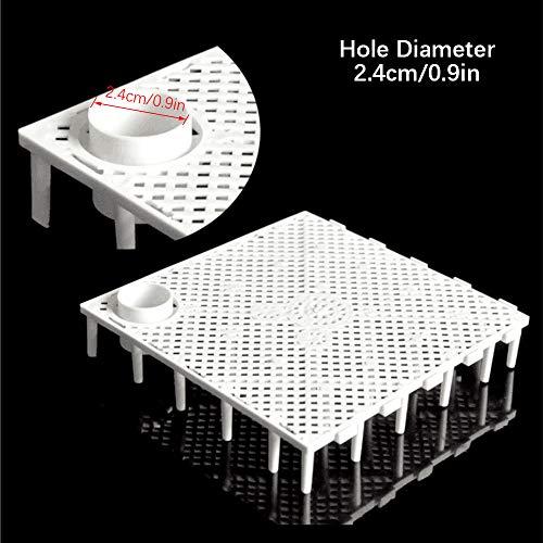Wankd 10 stuks Grid scheidingswand dienblad isoleren snijplank vis tank onderwit filter aquarium box, 14.5 * 14.5 * 2.7cm, Wit bandmondstuk
