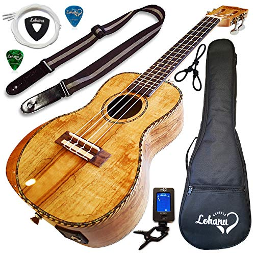 Ukulele From Lohanu Amazing Looking Spalted Maple With Armrest Glossy Finish With 3 Band EQ & Pickup With All Accessories Included! (Concert...