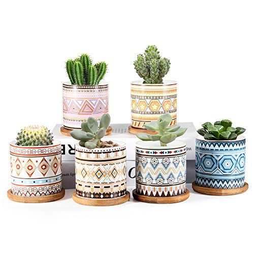 Succulent Planter, ZOUTOG 3 inch Ceramic Mini Succulent Pots, Mandala Pattern Round Small Flower Pots with Drainage and Bamboo Tray, Pack of 6 - Plants Not Included