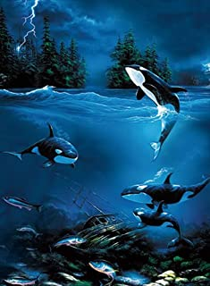 Best dolphin painting images Reviews