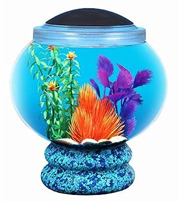 BettaTank 1.6-Gallon Fish Bowl with LED Lighting