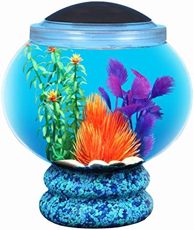 Koller Products BettaTank 1 6 Gallon Fish Bowl with LED Lighting product image