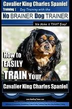 Best cavalier it training Reviews