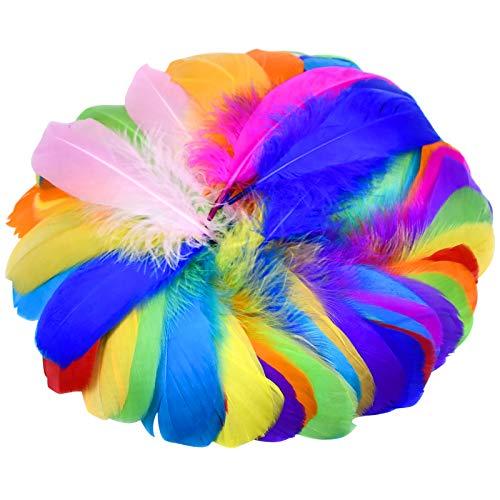 Chstarina 100 Stück Bunte Feder Dekofedern Gänsefeder Flauschige Federn in Gemischte Farben Größe für DIY Kunstwerk Traumfänger Federball Party Hüte Haarschmucken Dekoration 12-18 cm