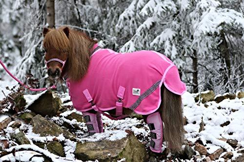 Zoe Set Abschwitzdecke Halfter Strick Transport Gamaschen Rot Schwarz Rosa Glitzer 70 80 90 100 Minishetty Shetty Tysons (100 cm, Set Rosa)