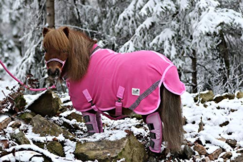 Zoe Set Abschwitzdecke Halfter Strick Transport Gamaschen Rot Schwarz Rosa Glitzer 70 80 90 100 Minishetty Shetty Tysons (90 cm, Set Rosa)