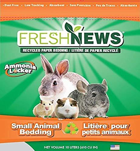 Fresh News Paper