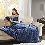 Luxury Mink Cotton Weighted Blanket, Gravity 2.0 Blankets, Great Sleep Therapy for People with Anxiety, Autism, ADHD,...