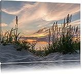 Gras am Strand bei Sonnenuntergang Format: 80x60 auf