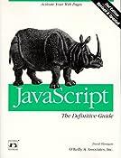 JavaScript: The Definitive Guide (Nutshell Handbooks)