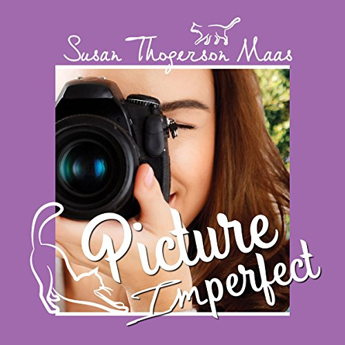 Picture Imperfect audiobook cover art