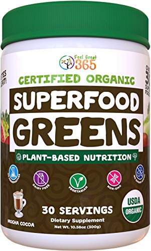 Superfood Greens Mocha by Feel Great 365, Doctor Formulated, Organic, Dairy-Free, and Vegan Packed with Real Green Vegetables, Polyphenols and Probiotics. Best Tasting. Helps Improve Digestive Health