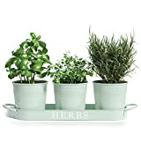 """Barnyard Designs Herb Pot Planter Set with Tray for Indoor Garden or Outdoor Use, Decorative Soft Mint Metal Succulent Potted Planters for Kitchen Windowsill, (Set of 3, 4.25"""" x 4"""" Planters on 12.5"""" x"""