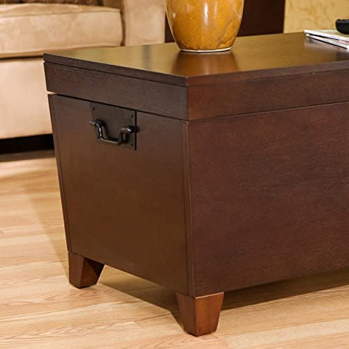 Clear trunk coffee table _image2