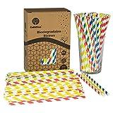 GoBeTree 300 Pajitas de Papel biodegradables con Colores Variados, Pajita Desechables...