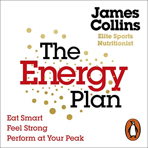 The Energy Plan audiobook cover art