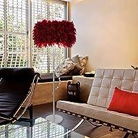 Zxyan フロアライト フロアランプ フロアスタンド ツェッペリンクリエイティブ現代のシンプルな結婚式リバブル誕生日ベッドルームリビングルームハイ - エンドホテルフェザークリスタルタッセルランディングランプアイのお手入れ垂直フロアライト、ダークレッド 仕事 読書 適用 (Color : Dark Red)