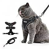 Le sure Cat Harness and Leash for Walking Escape Proof - Reflective Adjustable Oxford Soft Padded Cat Vest Harness and Leash Set, Black, Medium Large Size