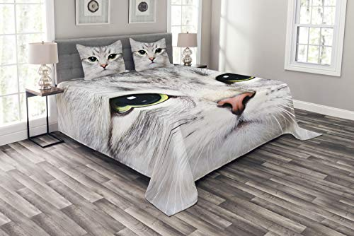 ABAKUHAUS Katze Tagesdecke Set, Digital-Nette Reizende Katze, Set mit Kissenbezügen Romantischer Stil, für Doppelbetten 220 x 220 cm, Graue Elfenbein
