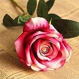 Qiaoqi Artificial Flores Falsas Acacia Rosa solaFlores, Ramos de Boda para decoración de Bodas, hogar, jardín,Fiesta