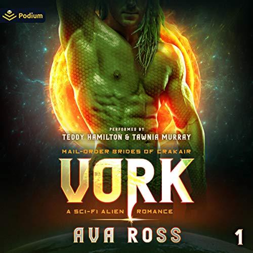 Vork Audiobook By Ava Ross cover art