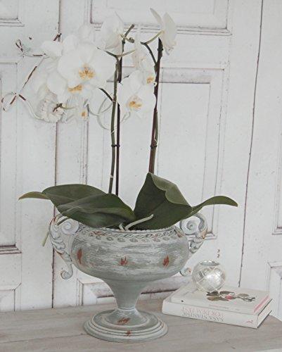 Pokal Henry, Amphore, Vase im antikem Landhaus Stil Antique Shabby Chic