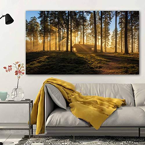 ganlanshu Rahmenlose Malerei Licht Wald Bäume Landschaft Bild Leinwand Malerei Wohnzimmer Wandbild Moderne Dekoration PosterZGQ5913 30X60cm