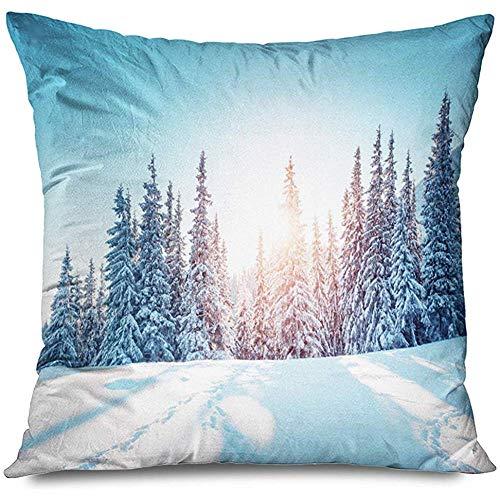 Aoyutiy decoratief kussensloop winterlandschap in zonlicht natuurpark kleur hoar adembenemende outdoor cover rits kussensloop