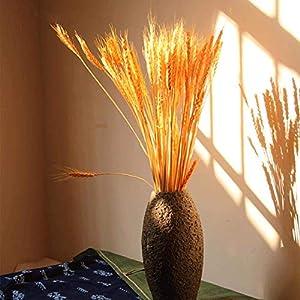 HELLOGIRL 100 piezas de flores secas naturales espiga de trigo ramo triticum paquete para bricolaje mesa de cocina boda…