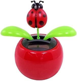 solar dancing ladybug