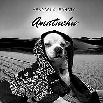 Amatuchu