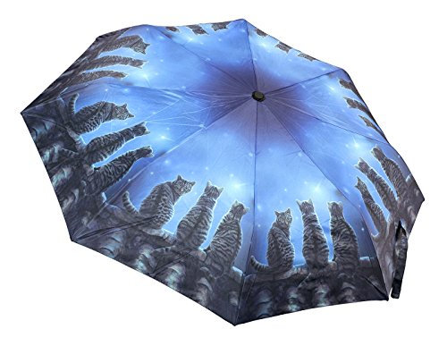 Regenschirm mit schwarzen Katzen - Wish Upon A Time by Lisa Parker - Taschenschirm Kompaktschirm