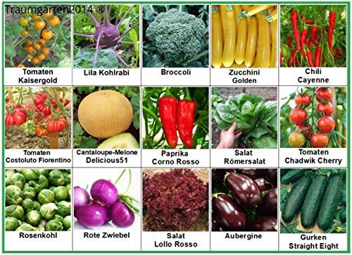 Gemüse Set 2: Broccoli Gurken Zucchini Zwiebel Rosenkohl Kohlrabi Aubergine Salat Tomate Chili Paprika Melone Samen Saatgut