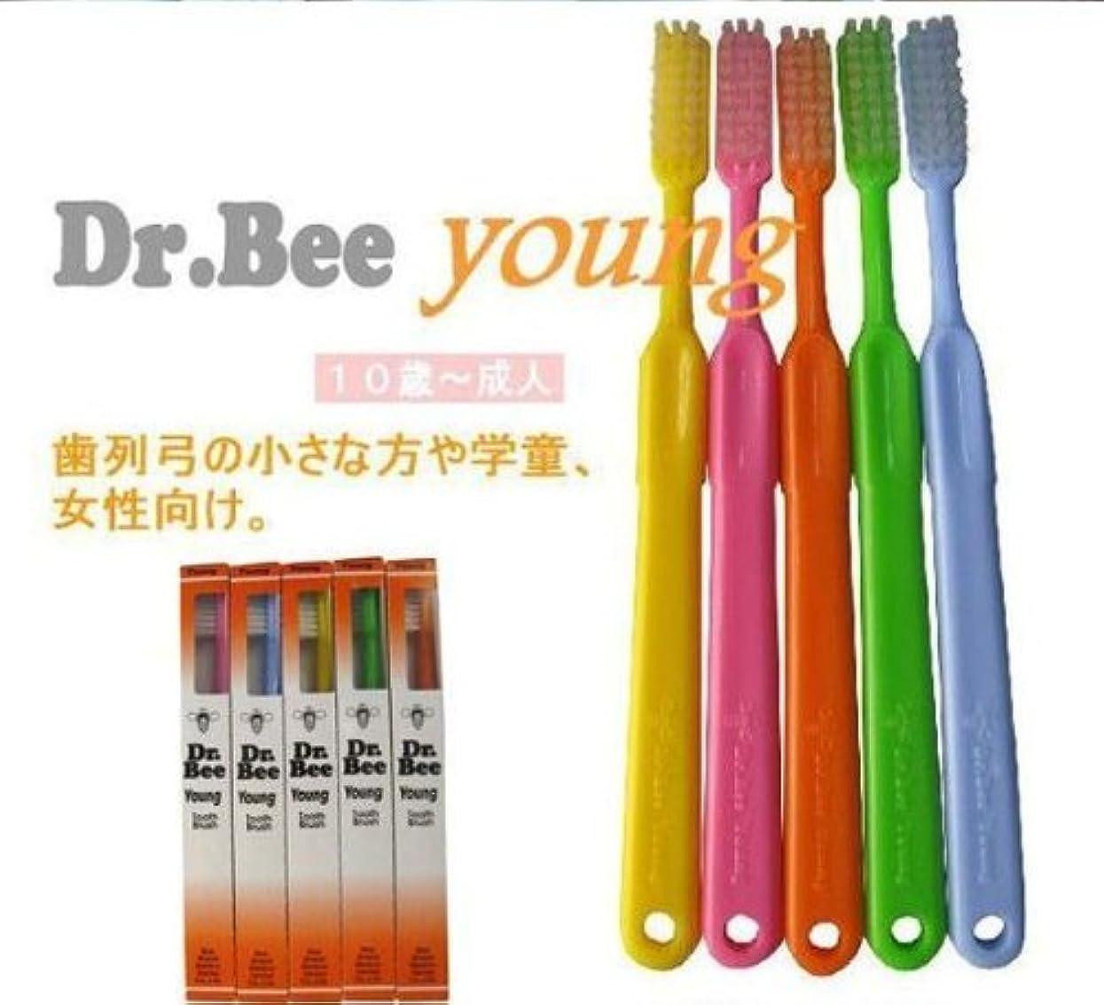 見捨てる発表するくるくるBeeBrand Dr.BEE 歯ブラシヤング かため