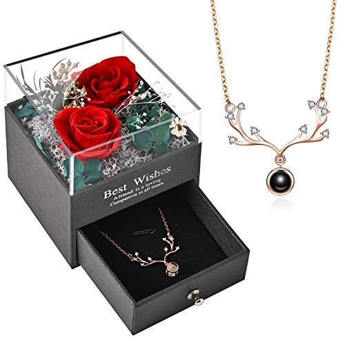 Y-home Infinity Rosen, Ewige Rosen Box mit Halskette (rot)