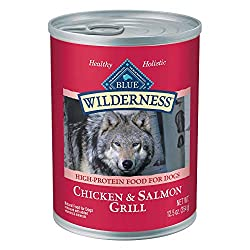 Best Dog Food For Skin Allergies