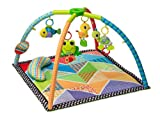 Product Image of the Infantino Pond Pals Twist and Fold Activity Gym and Play Mat