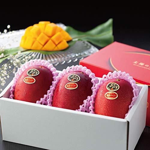 マンゴー 太陽のタマゴ 赤秀 3L 450g以上×3玉 JA宮崎経済連 宮崎県産 完熟マンゴー 太陽のたまご