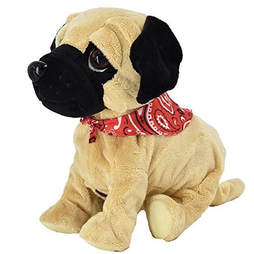 WEofferwhatYOUwant Pug Daddy - P...