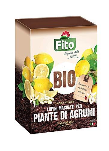 Fito Lupini Macinati per Piante di Agrumi e Limoni 2 kg| Concime Naturale Biologico 100% Vegetale, Inodore a Base di Lupini in Microscaglie (1)